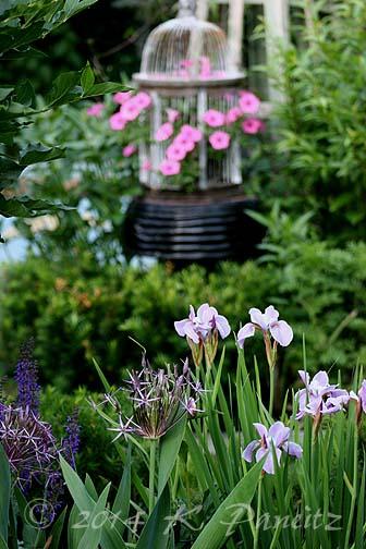 2014 June Garden1