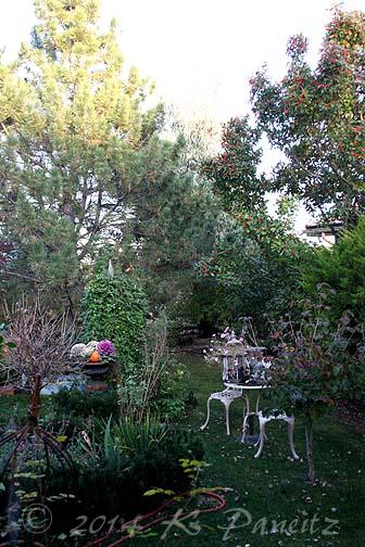 2014 Nov Garden3
