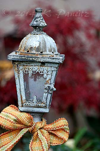 Lantern stake Nov garden1