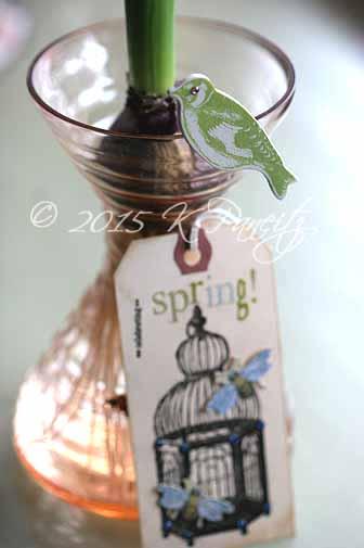 Spring Tag1