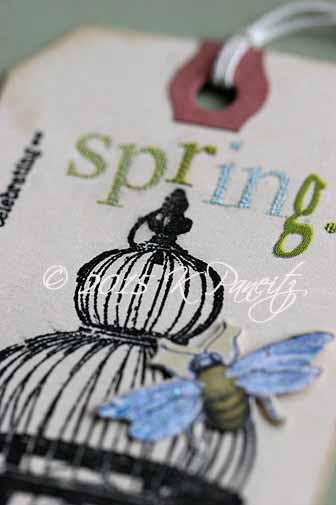 Spring Tag7