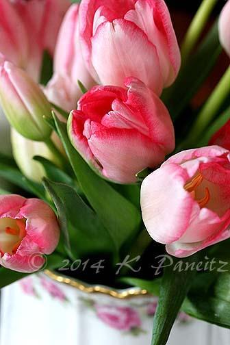 Limoge Pitcher & Tulips2