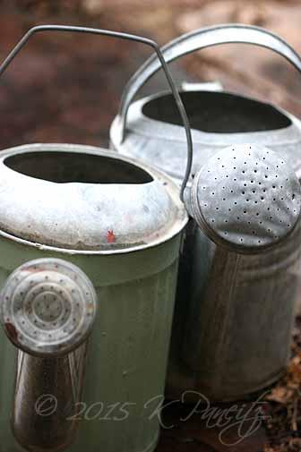 Vintage Watering Cans1