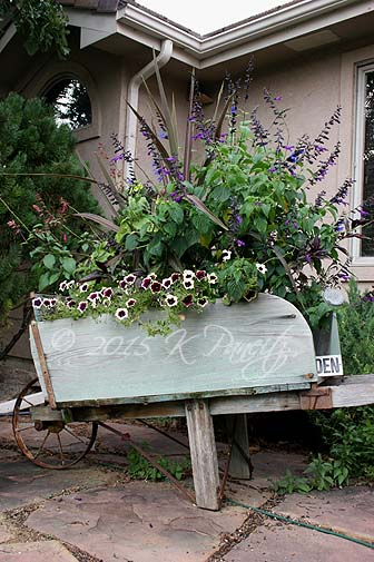 2015 Vintage Wheelbarrow3