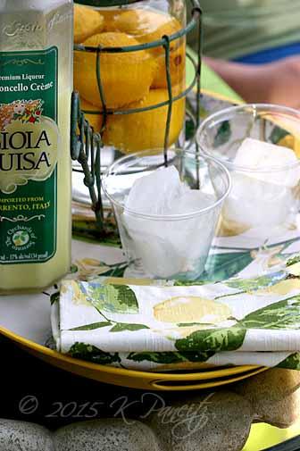 Lemon tray2
