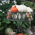 Vintage planter and pumpkins1