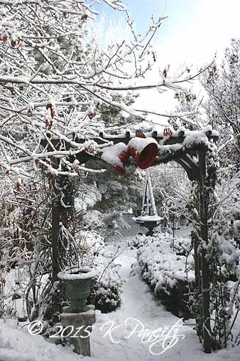 2015 Winter Garden1