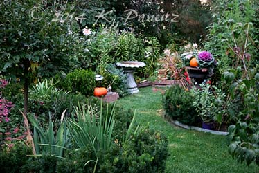 2014 Fall Garden