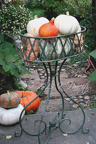Vintage planter and pumpkins5