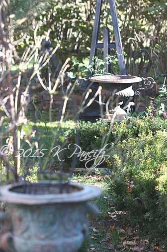 2015 Nov Back Garden10