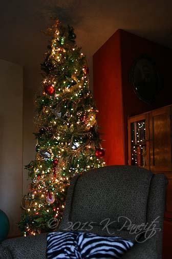 2015 Christmas5