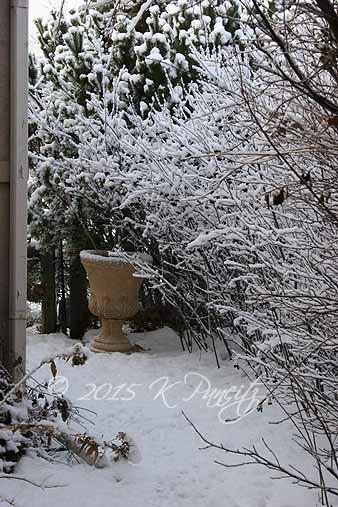 2015 Dec Snow3