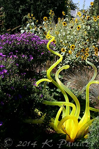 Chihuly Glass Exhibit1