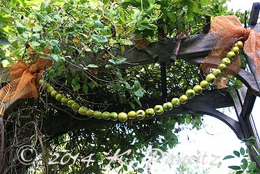 Apple garland4