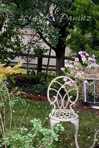 2014 Nov Garden1