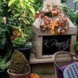 2015 Fall Fireplace2