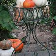 Vintage planter and pumpkins
