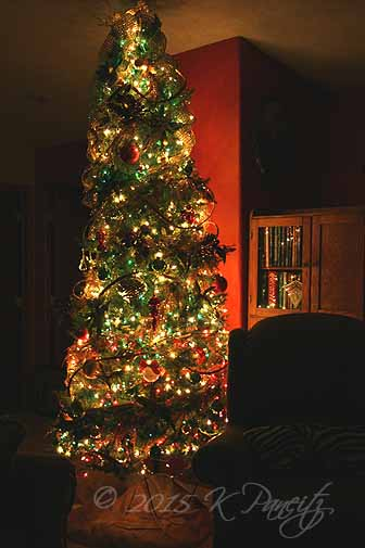 2015 Christmas Tree2