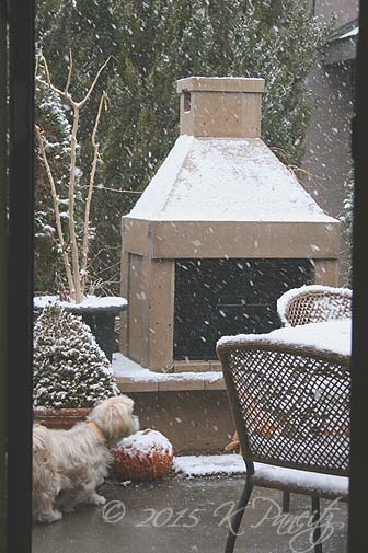 2015 Dec Snow