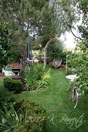 2017 July Back Garden1