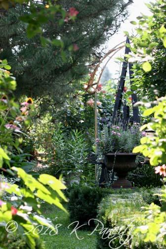 Aug Garden early AM