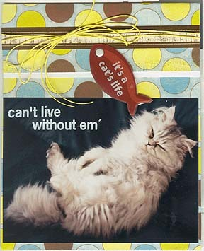 Cats_life_photo_card