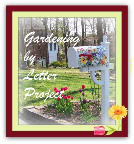 Gardening by letter project